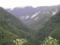 Cerro Candelaria, Ecuador