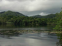Guatemalan wetlands