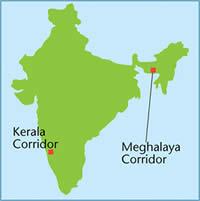 Location of the wildlife corridors