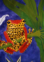 Order the new Poison dart frog Christmas card here