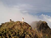Cerro Candelaria summit