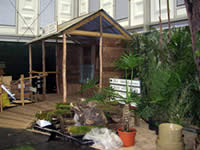 WLT's Atlantic Rainforest exhibit being constructed
