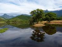 REGUA wetlands