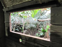 Ranger hut window