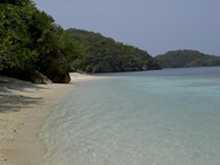 Beach on Danjugan Island