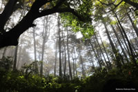 Sierra Gorda Biosphere Reserve©Roberto Pedraza