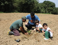 Antonio Tree Planting