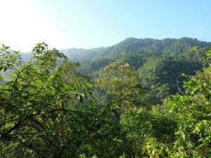 Buenaventura Reserve
