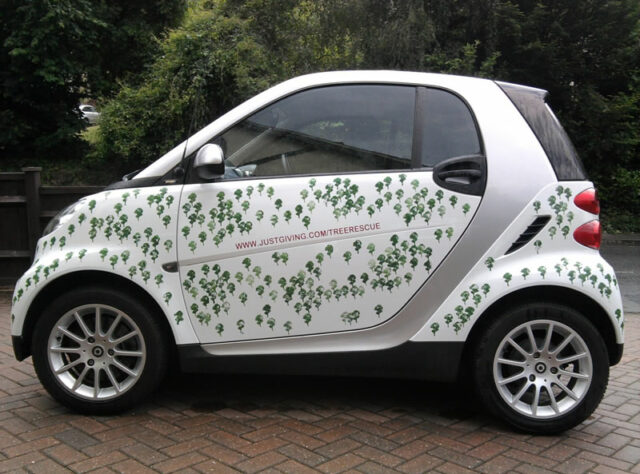 Smart car decorated to raise funds for WLT