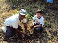 Ranger tree planting in Brazil