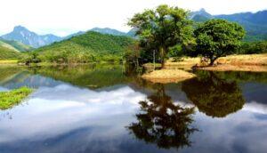 Guapi Assu Reserve in Brazil's Atlantic Rainforest