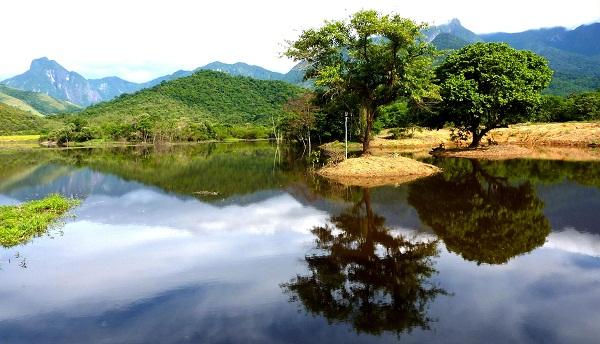 Guapi Assu Reserve in Brazil's Atlantic Rainforest