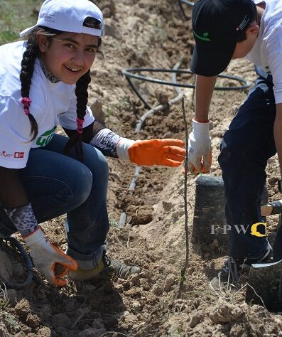 Local school children plant trees