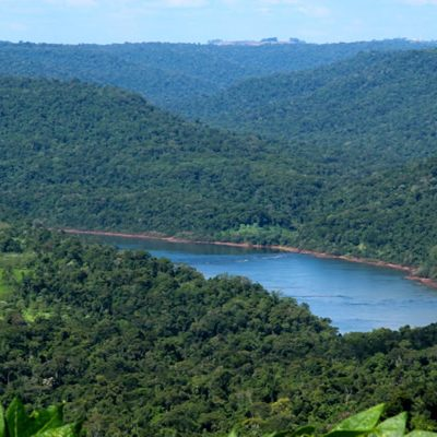 Misiones Rainforest Corridor project