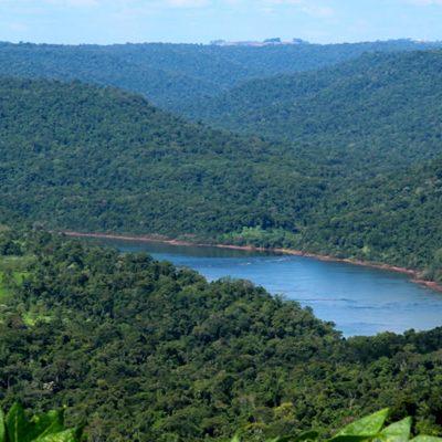 Misiones Rainforest Corridor project