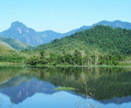 Guapi Assu Reserve, Brazil