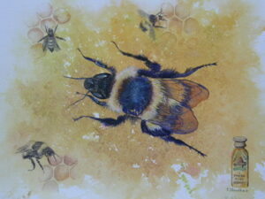 A Taste of Honey by Jan Houchen, on display at WLT gallery until 25 March 2013