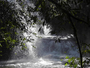 Photograph of a waterfall in the Atlantic Rainforest of Misiones
