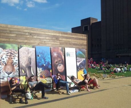 Photograph of WLT deckchairs and display boards at the Chelsea Fringe, Battersea Power Station. © Ruth Stanton Saringer.