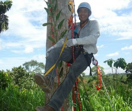 Photograph of Keeper of the Wild José Manchay tree climbing in the Laipuna reserve.
