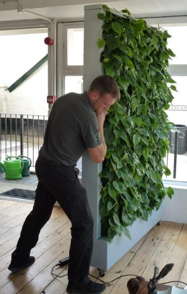 Wlt Unveils Mobile Green Wall For Halesworth In Bloom