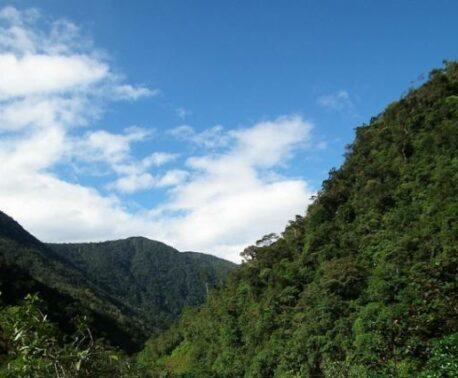 A view of the 390 acre property. © NCI Ecuador.