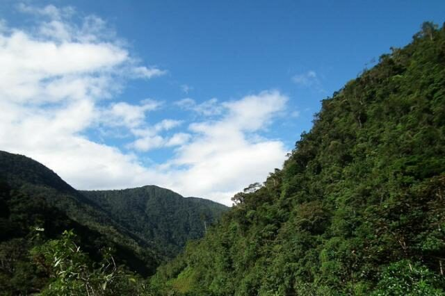 A view of the 390 acre property. © NCI Ecuador.