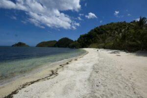 Danjugan Island, sea and sandy beach, with forest.