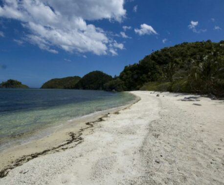 Danjugan Island, sea and sandy beach, with forest.