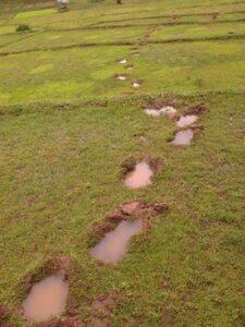 Footprints across a field.