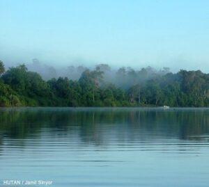 Kinabatangan River.