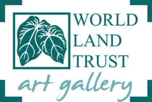 WLT art gallery