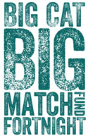 Big Cat Big Match logo
