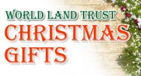 WLT Christmast Gifts logo