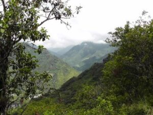 View of Río Zuñac Reserve.