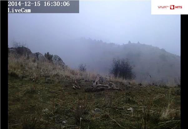 fpwc-webcam.jpg