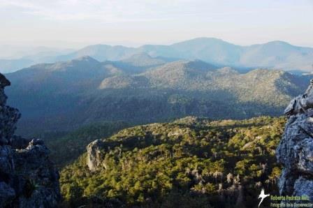 Cerro Prieto-Cerro la Luz Reserve.