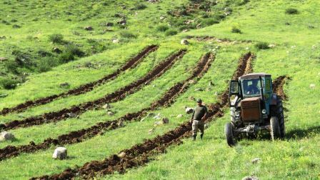 Tree planting in the Caucasus Wildlife Refuge.