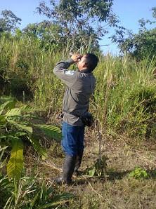 Ranger Armando