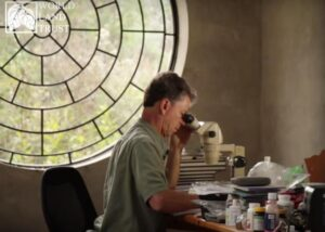 Lou Jost studying orchids through a microscope.
