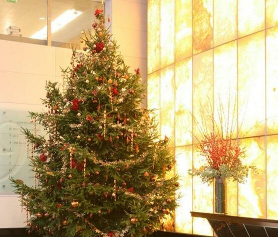 A decorated Christmas tree supplied by Enterprise Plants.