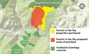 forests-sky-purchase-map
