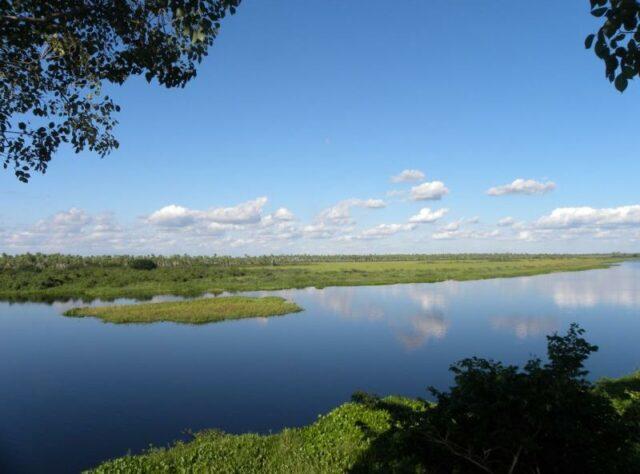 View of Chaco-Pantanal.
