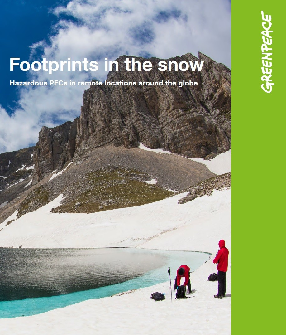 greenpeace-leaflet