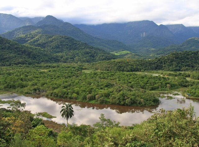 REGUA reserve.