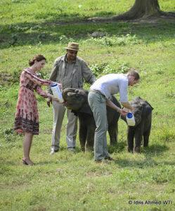 Royal visit to India