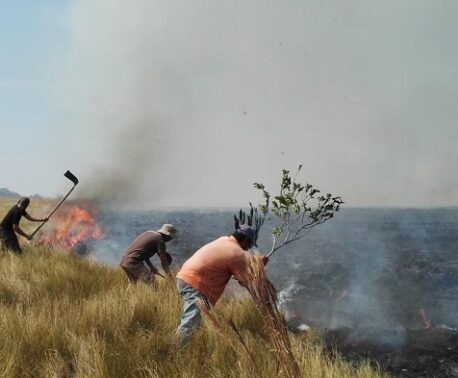 Fighting fires in the Beni savanna