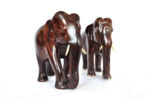 Elephant auction