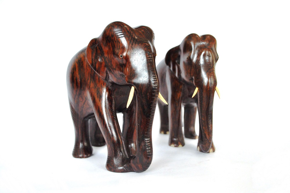 Elephant auction