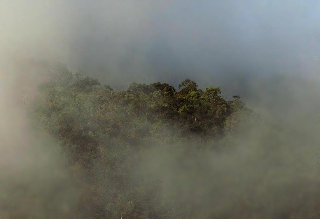Rio Machay reserve